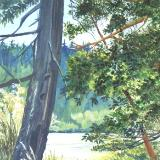 Big Tree on Triangle